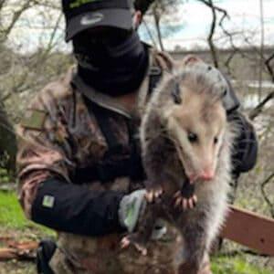 armor hand opossum rescue feature