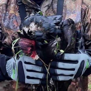 armor hand turkey vulsture rescue feature