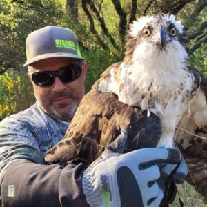 armor hand osprey rescue feature