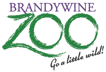 brandywine zoo go a little wild