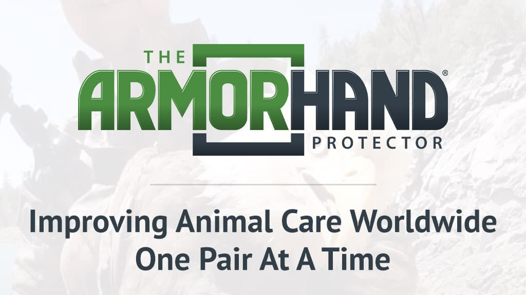 armor hand gloves one pair at a time cover